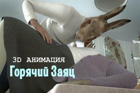Горячий Заяц (5 мин)
