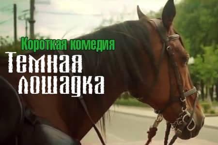 Темная лошадка (12 мин)
