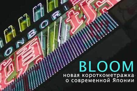 BLOOM (5 мин)
